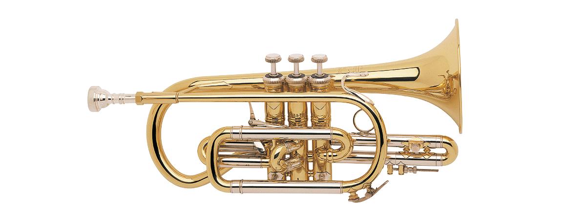 Vincent Bach Stradivarius Instruments
