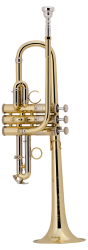 Bach Professional Model ADE190 D / Eb Trumpet