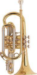 Bach Professional Model 184ML Bb Cornet