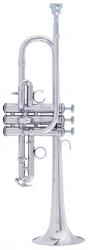 Bach Professional Model ADE190S D / Eb Trumpet